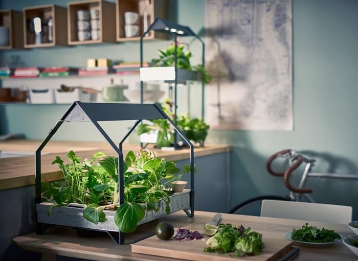 Дизайн домашнего огорода