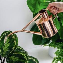 Лейка HAWS The Rowley Ripple — Two Pint Copper